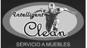 logo de Intelligent Clean